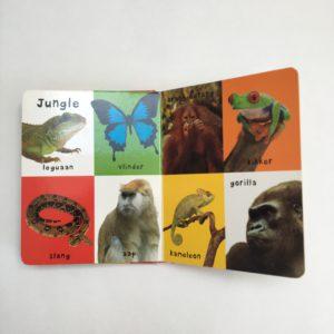 Boek mijn eerste 100 dieren