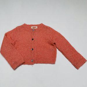 Gilet gebreid roze knitwear Maan 18m