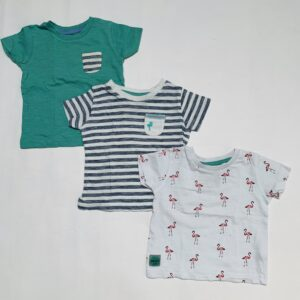 3 x t-shirt flamingo Next 3-6m