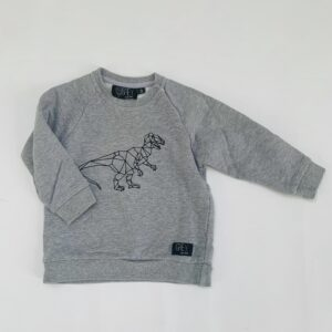 Sweater dino Grey Kids Clothing 18m