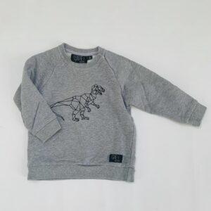 Sweater dino Grey Kids Clothing 18m