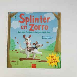 Boek Splinter en Zorro