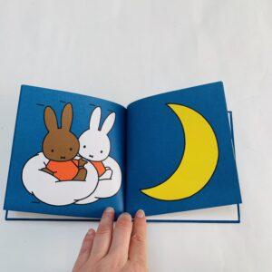 Boekje nijntje's droom